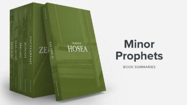 Bible Book Summaries – Minor Prophets, Vol. 1